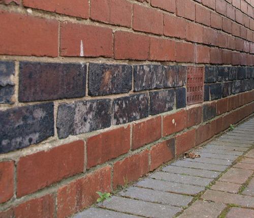 Avoiding Cowboy Damp Proofers In York Preservation Expert