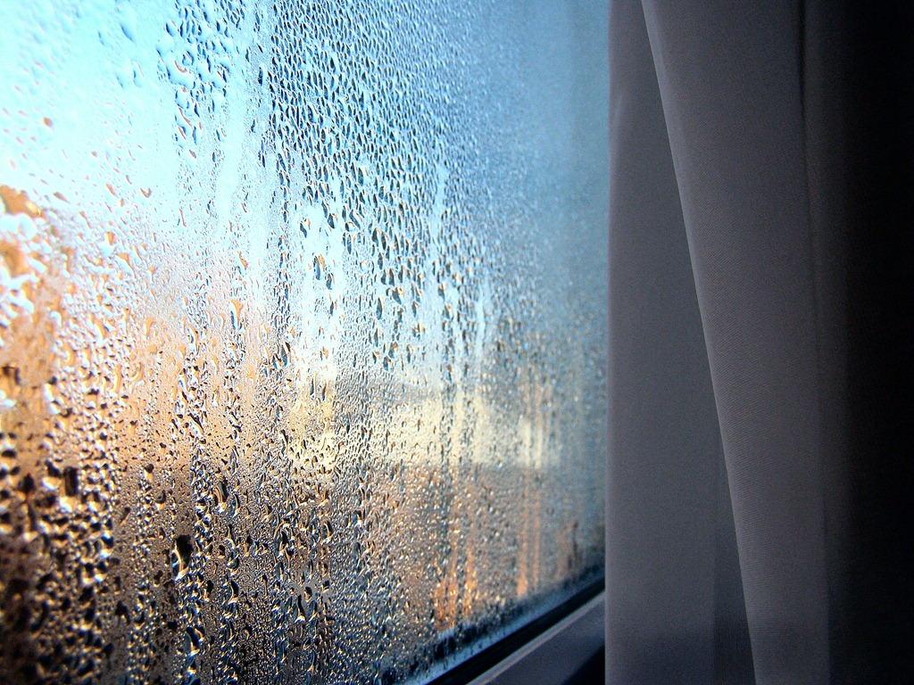 How to spot and control condensation and mould growth for Fenetre meaning