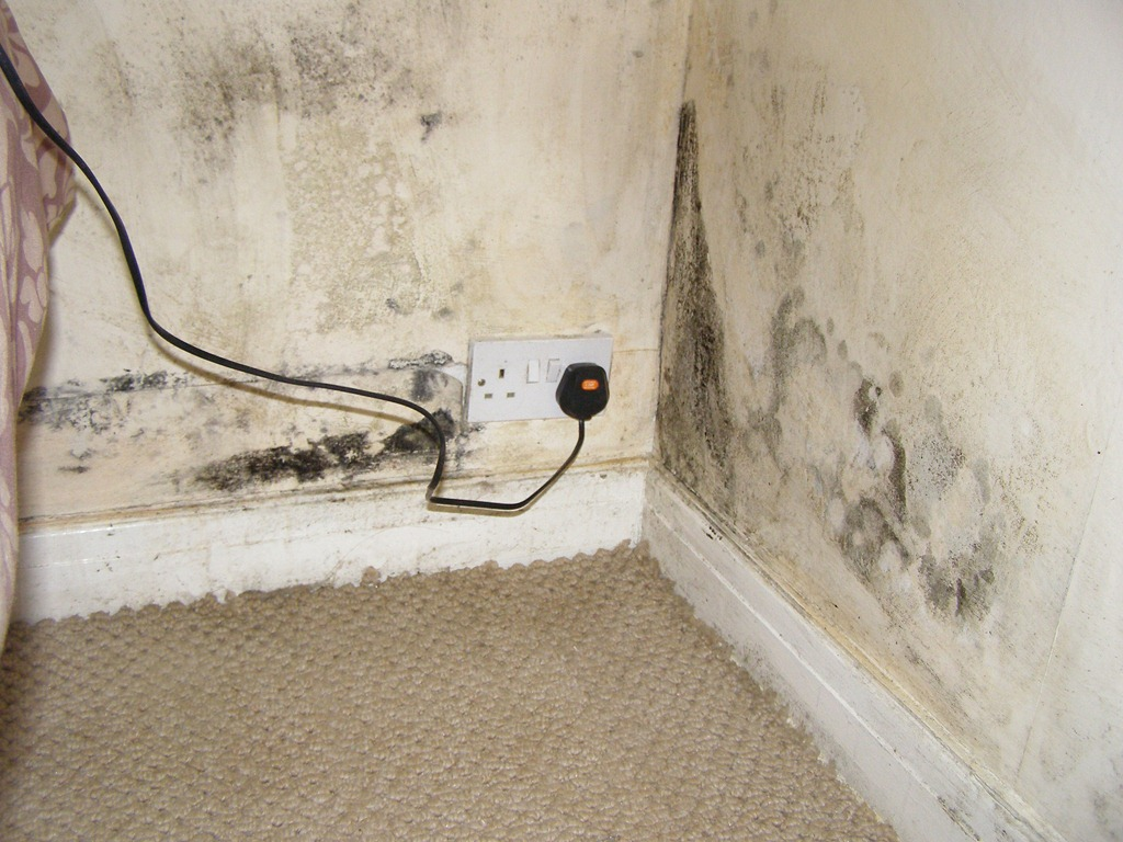 Condensation In Leeds Mould Caused By Condensation In A House In North Leeds