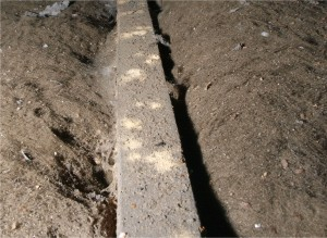 Example of how to spot 'active' woodworm infestation (Harrogate).