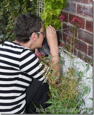 Dr Bev West uses a boroscope to inspect cavity wall ties for corrosion on this Harrogate property