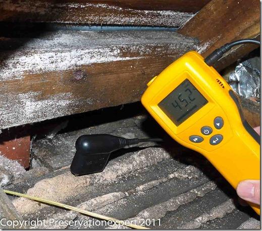 Wet hygroscopic salts on the ceiling plaster - Harrogate