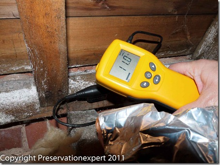 Salt contaminated timber with low moisture meter reading.