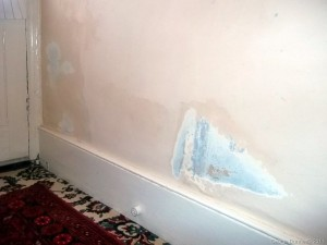 Damp-rising-up-party-wall-West-Ella-Rd-NW10.jpg