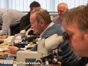 PXCA members using microscopes to inspect timber