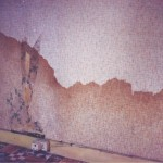 Rising damp in Yorkshire