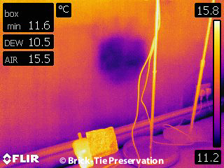 Is thermal imaging helpful for damp diagnosis?